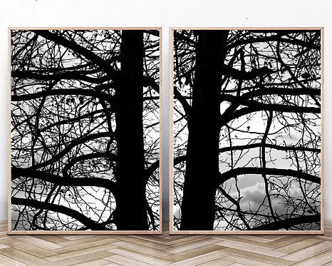 Black And White Set of 2,Trees Branches Wall Art prints,Printable Wall Decor,Fine Art.Trendy wall decor,Digital download