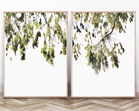 Branches Wall Art Print,Digital Download