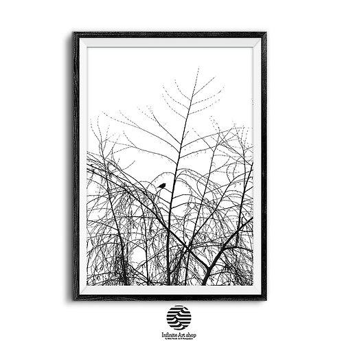 Bird Wall Art Print ,Digital Download,Minimalist Art Print,Tree Branches Wall Art,Trendy Wall Art Poster.