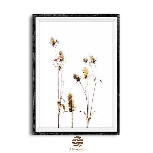 Floral Print,Botanical Wall Art,Wildflower Prints,Herb Wall Art,Dried Flowers Print,Digital download,Trendy Wall Art,
