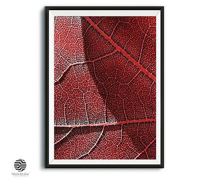 Botanical Red Artwork  Digital Download