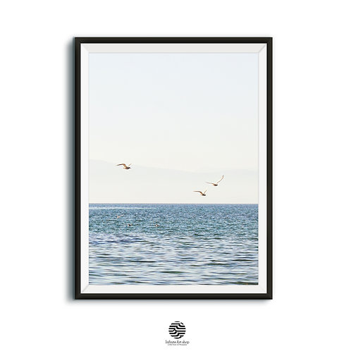 Minimalist Bird Print,Flying Birds Photography,Lake Wall Art,Coastal Print.