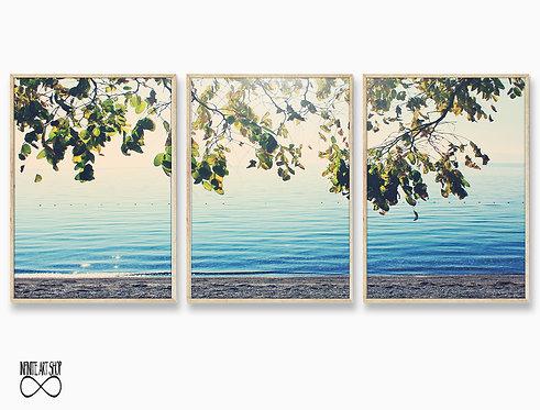 Set of 3 Prints,TreeBranches Print,Branches Wall Art,Beach Prints,Coastal Wall Art,Digital Download,Trendy Wall Art Prints