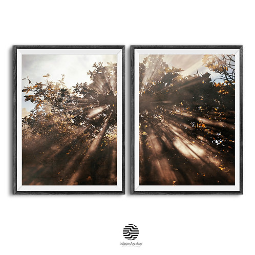 Rays of Sunlight in a Tree Branches,Set of 2 Nature Wall Art,Autumn Forest Print,Fall Wall Art,Modern Printable Wall Decor,La