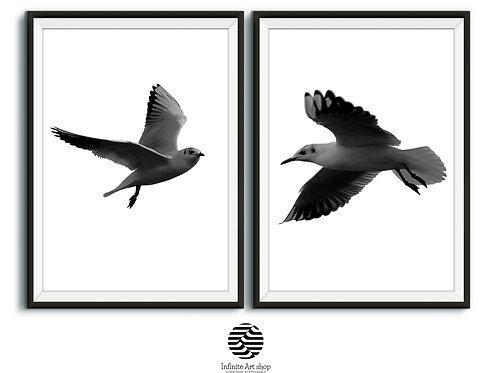 Seagull Wall Art,Bird Print Set of 2,Birds Wall Art,Flight Birds Print,Minimalist Nature Print,Digital Download,Trendy Print