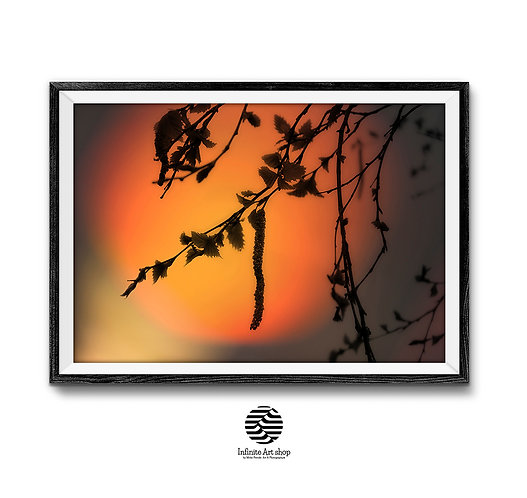 Silhouette Print,Tree Branches Wall Art,Sunset Wall Art,Sunset Picture,Summer Print,Digital Download,Trendy Wall Art,