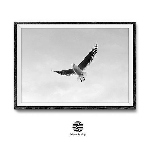 FlyingBird Wall Art,Minimalist Black and White Bird Print,Nature Print.Sky Wall Art.Clouds Wall Art.Digital Download,