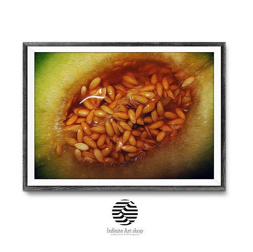 Cantaloupe Melon Art Print,Digital Download,last minute gift ideas,Fruit Wall Art,Nature,Trendy wall art,extr large wall art,
