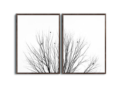 Tree Branch Minimalist,Set of 2 Birds on branches Wall Art,Black and white.