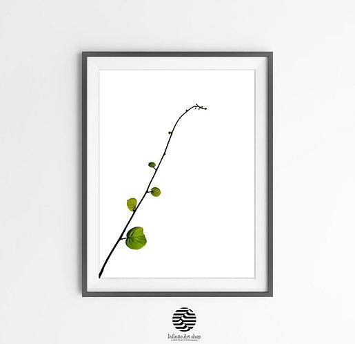 Kiwi Branches Print,Minimalist Botanical Wall Art Print,Green Wall Art,Modern Printable Wall Decor,Downloadable Print,