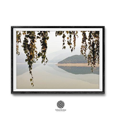Tree Branches Print,Landscape Color Photography,Coastal Print,Digital Download,Trendy wall art.