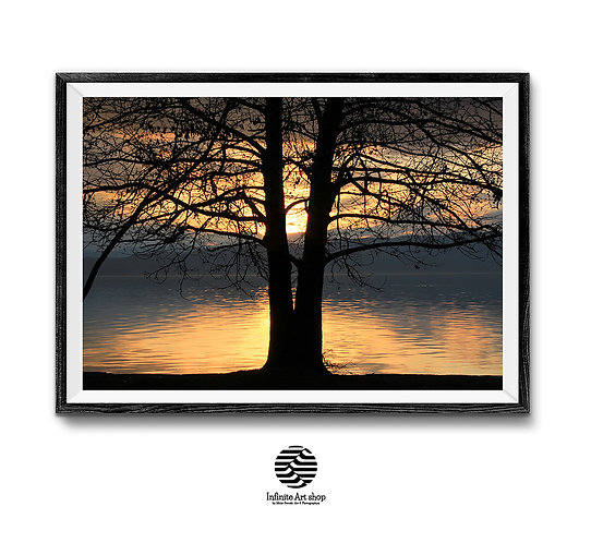 Sunset Wall Art Print,Tree Branches,Ancient Ohrid Lake Print.Coastal Landscapes,Sunset printable wall art,digital download,