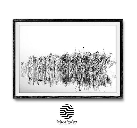 Minimalist Reed Wall Art ,Black And White Printable,Coastal Wall Art Print,Digital Download,Trendy Wall Art Print