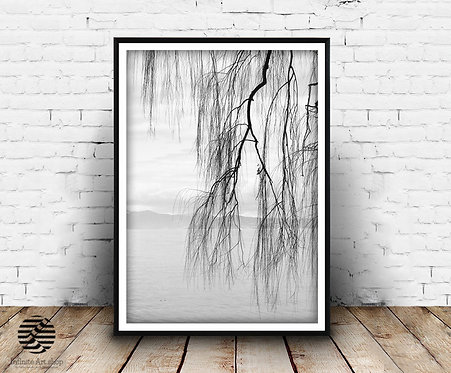 Black and White Nature Wall Art Print,Willow Tree Print,Branches Wall Art,Minimalist,Digital Download,Trendy Wall Art Print