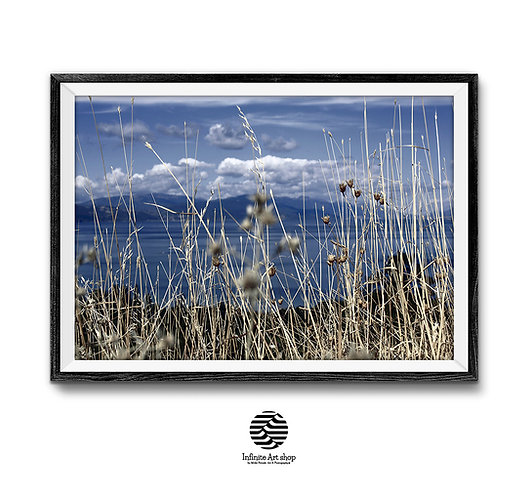 Summer Landscape Print,Dry Grass Print,Moody Clouds  Photography,Horizontal Nature Landscape,digital Download,Trendy wall art