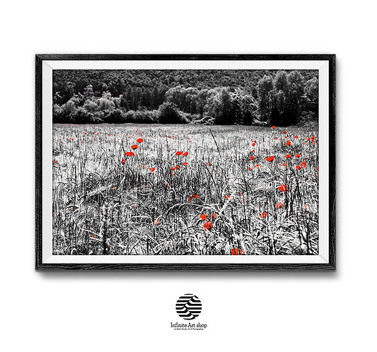 Red Poppies Print,Modern Nature Landscape Photography, BotanicalPrint,Fine Art Photography,Digital Download,Trendy