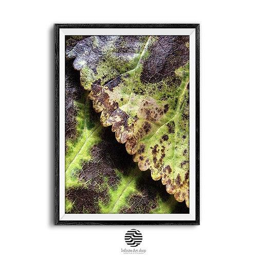 Green Wall Art Print,Leaves Macro Photography,Botanical Wall Art,Textures,Fall leaves,Nature ,Digital Download,