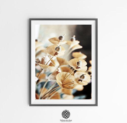 Botanical Flower Art Print,Moody Floral Downloadable Prints,Fall Flower Print,Rustic Decor,Fine Art Photography,Nature Art pr