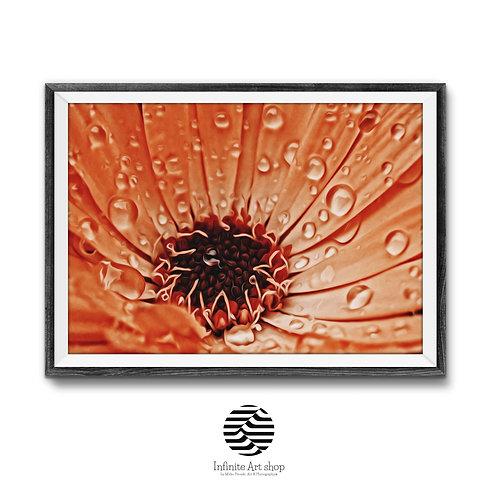Flower Artwork digital Download,Marigold Photography,Macro Flower print,Printable wall decor,