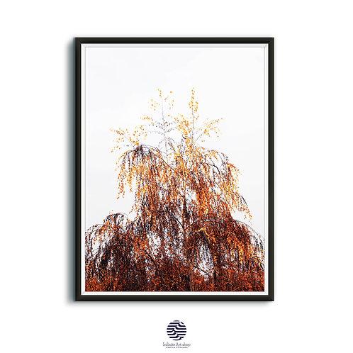 Minimalist Birch Tree Print,Fall Birch Branches Printable Wall Art,Autumn Decor,