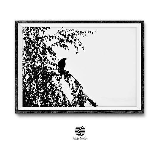 Bird on Branches Print,Silhouette,Tree Wall Art,Minimalist Black and White print,Bird Wall Art,Digital Download,Trendy Art