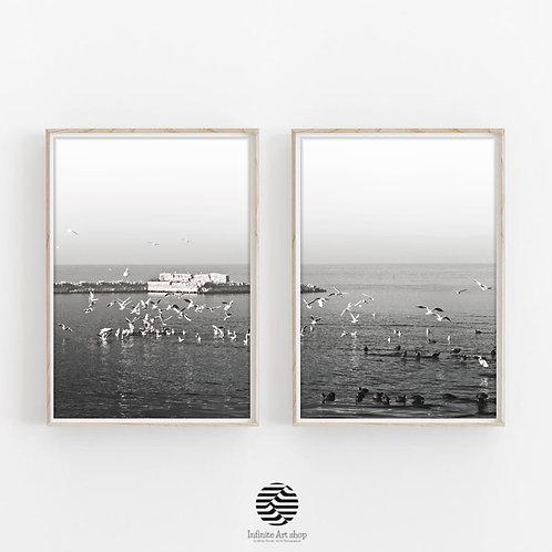 Set of 2 Birds Wall art Print,Digital Download