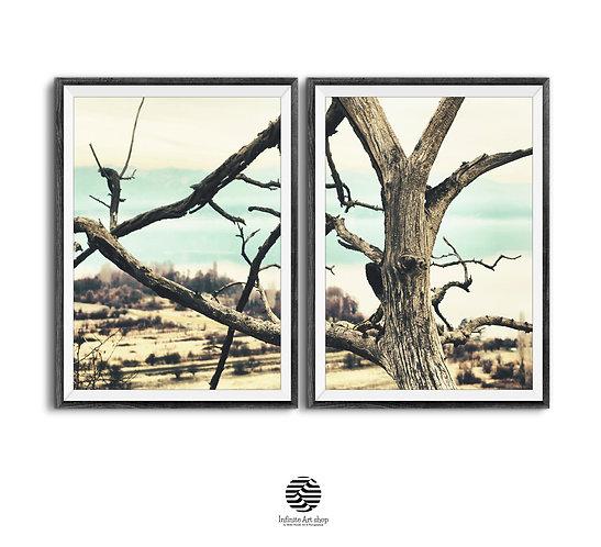 Set of 2 Tree Branches Wall Art,Landscape Print,Woodland Tree Print,Nature Art,Old Branches,Printable Wall Decor,Fine Art