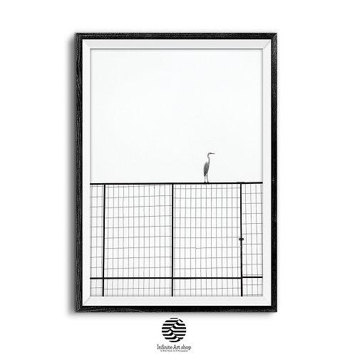 Stork Bird Wall Art Print,Minimalist Nature Print,Bird Photography, Black and White Animal Print,Digital Download,Trendy