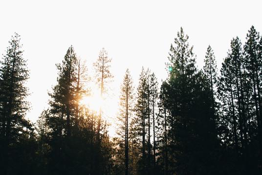 Coucher de soleil Arcachon