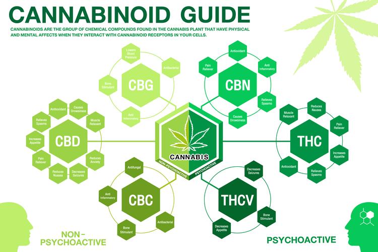 cannabis-consumption-2.png