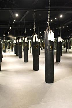 Flyweight Boxing Studio 15