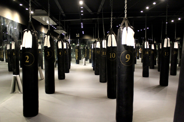 Flyweight Boxing Studio 14