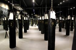 Flyweight Boxing Studio 14