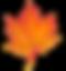 Maple-Leaf-PNG-Transparent-1.png