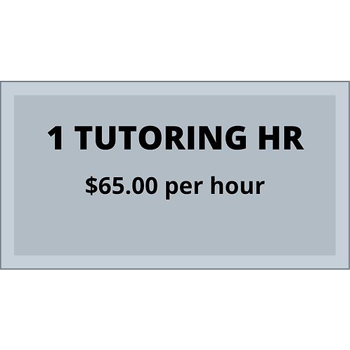 1 single tutoring hour