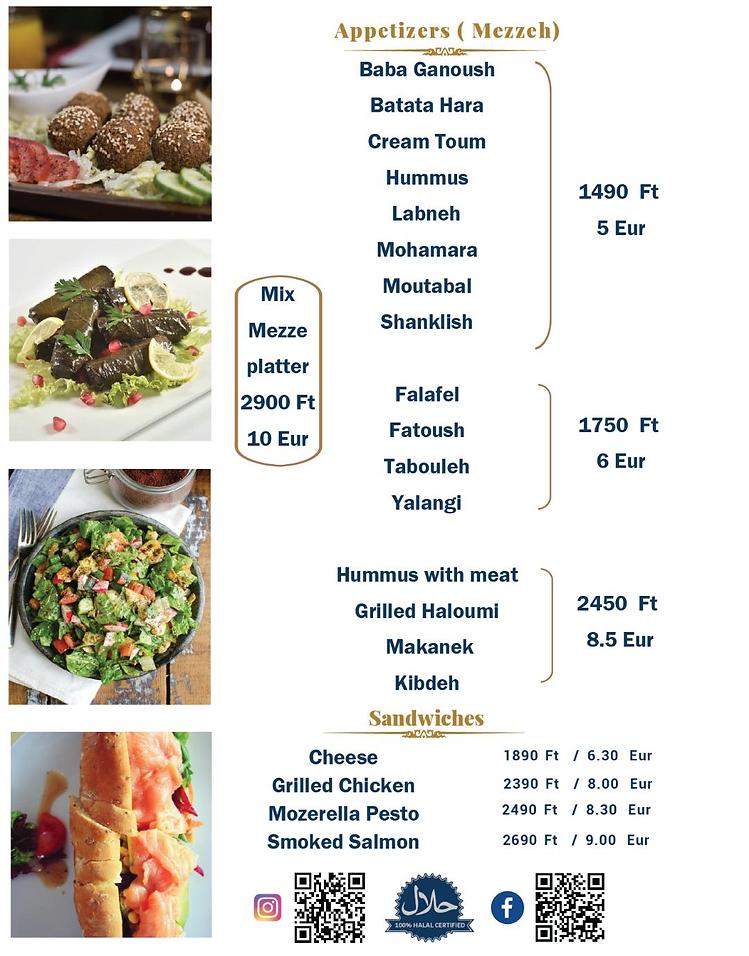 Arabic appetizers ; falafel , hummus , mezze