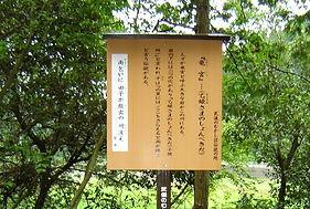竜宮(ロマン看板).jpg
