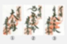 日龍峯寺御朱印画像.jpg