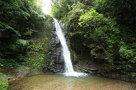 八滝ウッディランドの大滝