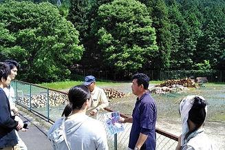 木の駅2.jpg