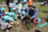 パッションフルーツの苗植え体験