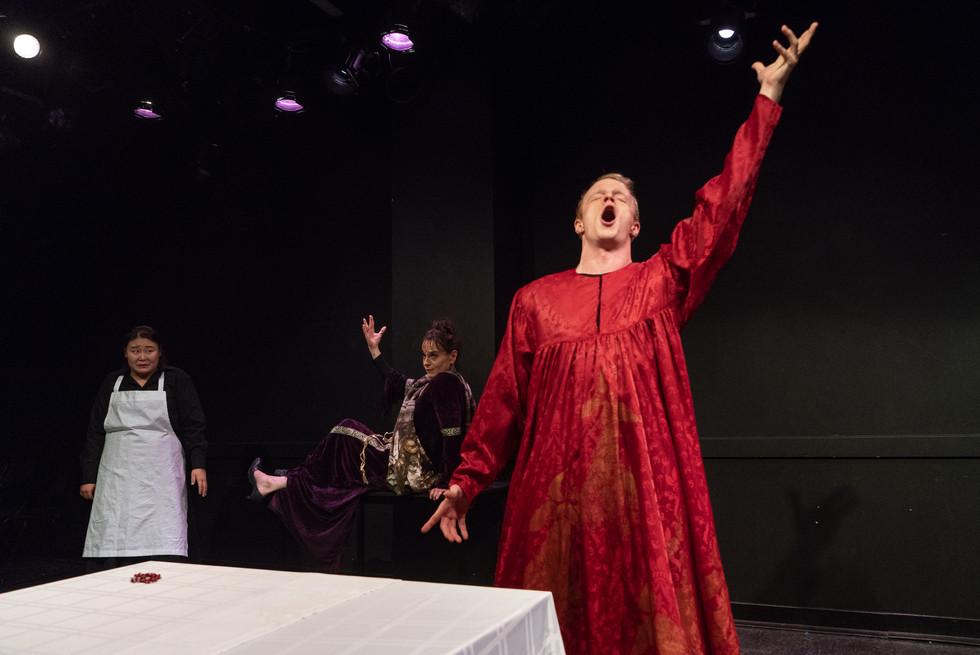 The Dinner Party Operas - 'Petronilla' NYU Grad Musical Theatre Dir Pauls Macs/Lights Bailey Rosa/Photo Steven Pisano