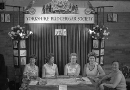 harrogate bs convention stand donated ny bray brown 1st time president l to r betty smith joyce gear