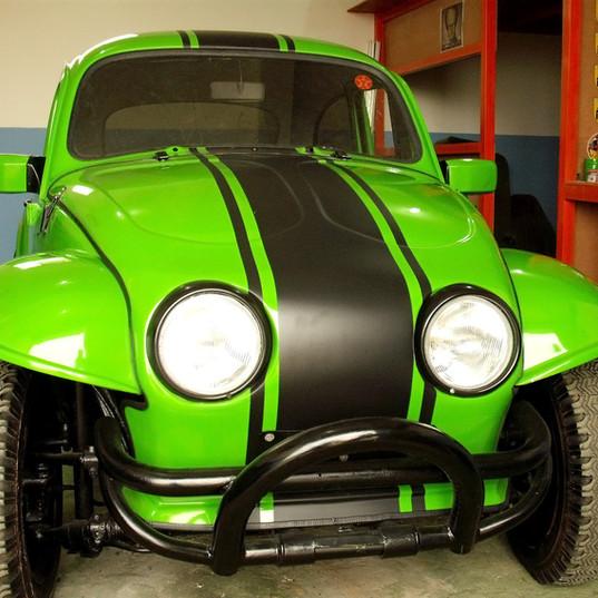 lindo exemplar de verde