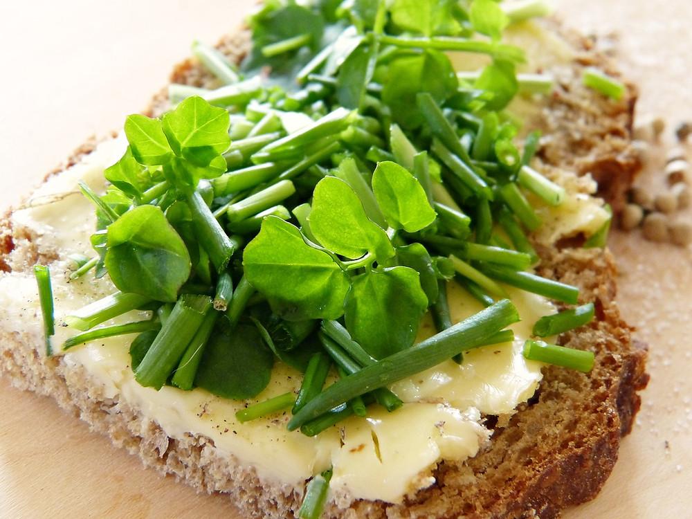 bienfaits nutritionnels cresson