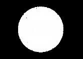 Logo-LHS-BlcTypoEcreteeVect.png