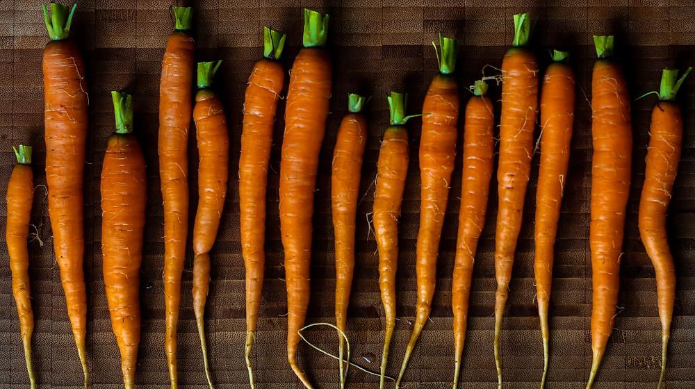 recette à base de carottes
