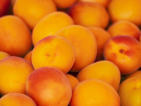 Riche, moelleux et rafraîchissant : adoptez l'abricot !