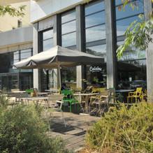 terrasse extérieur montpellier millénaire restaurant bio  & pêche durable
