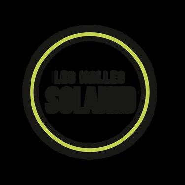 Logo-LHS-QuadriFdEcreteVect.png